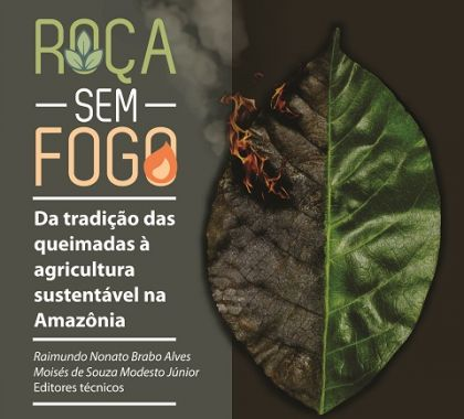 Embrapa promove agricultura que dispensa uso do fogo na Amazônia